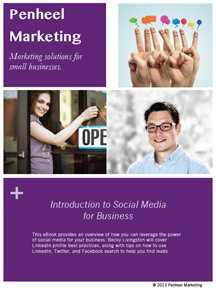 Introduction-to-Social-Media-for-Business-eBook Introduction to Social Media for Business