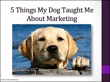 5-Things-My-Dog-Taught-Me-About-Marketing_cover_sm 5 Things My Dog Taught Me About Marketing Landing Page