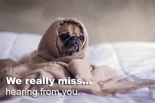 we-miss-hearing-from-you-pug-email How to Re-Engage Email Slackers