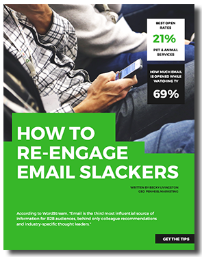 How-to-Re-Engage-Email-Slackers-cover How to Re-Engage Email Slackers eBook