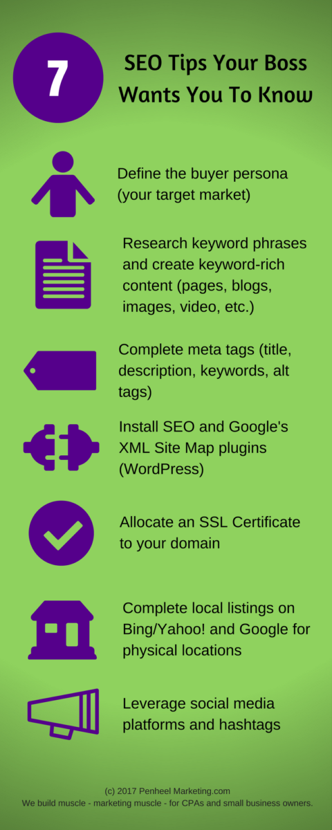 7-SEO-Tips-Your-Boss-Wants-You-to-Know_Infographic Design Portfolio